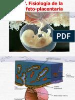Unidad Feto Placenta