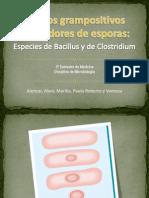 bacilosgrampositivosformadoresdeesporas-091025090123-phpapp01