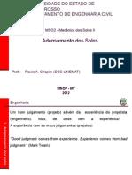 01 Adensamento_intuod_ppsx.ppsx
