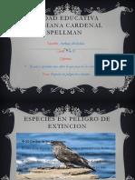 TRABAJO DE NATURALES.pptx