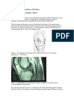 Anatomy and Biomechanics of the Knee
