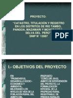 COFOPRI (Proyecto Satipo)