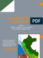 bosques ecoecuatorial