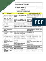 ANEXO N°01 - PMA - ASPECTOS E IMPACTOS AMBIENTALES.doc
