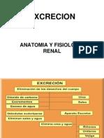 Fisiologia Excretor Clase