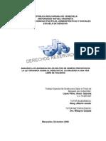 Analisis Delitos Flagrancia en La LOSDMVLV