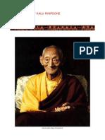 He Kalu Rinpochemahamudra