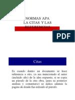 Normas APA Resumen (1)