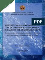 Respuesta de Las Asociaciones de Cocolitoforos. Elena Colmenero (Tesis)