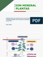 Nutricion Mineral de Las Plantas(Diapositivas)