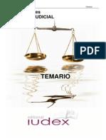 Auxilio Judicial Temario