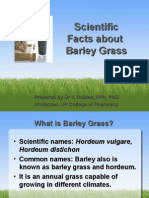 Scientific Facts About Barley