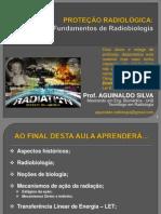 Aula 04 Fundamentos de Radiobiologia
