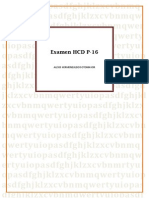 Examen Hcd P-16 Alexis Hermenejildo Sotomayor