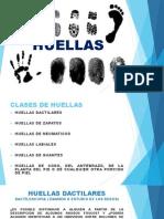 HUELLAS DATILARES 2.