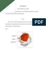 monografia macrodestrezas