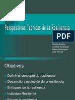 Perspectivas Teoricas de La Resilencia Humana 1204668605659730 4