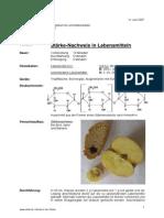 PP0133Staerkenachweis in Lebensmitteln