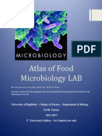 Atlas Food Microbiology