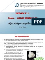 5. Sales Minerales