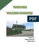 Pensiunea Vulcanii Noroiosi- SWOT