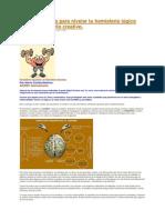 Cinco ejercicios para nivelar tu hemisferio lógico con tu hemisferio creativo