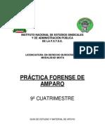 PRÀCTICA FORENSE DE AMPARO