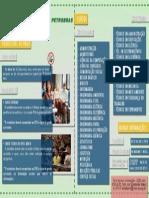 Petrobras - Programa de Estagio