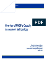 Capacity Assessment UNDP August 2009.pdf