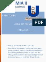Clase 7 Peritoneo