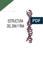 TEMA 1. Estructura Del DNA