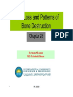Bone Loss and Patterns of Bone Destruction