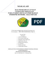LP Dan SP Halusinasi 2