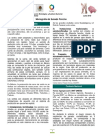 MonografíaPorcinos(jun2012)