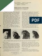 Debeaking Poultry
