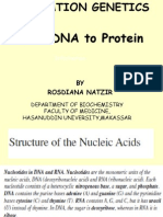 Chapter 7 - DNA to Protein_2