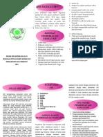Leaflet ASI Eks