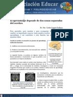 Aprendizaje Depende Dos Zonas Cerebro