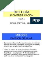 3DC_BIO_04