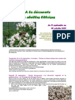 programme A la découverte des abeilles lilloises