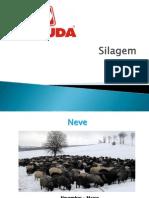 silagem-120922125718-phpapp01