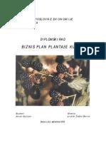 Biznis Plan Plantaze Kupina-J.guzijan-Prof. Dr Z.baros