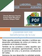 RÉGIMEN LABORAL DEL TRABAJADOR AGRARIO