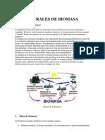 Las Centrales de Biomasa
