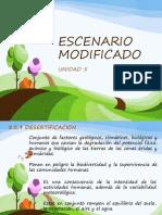 ESCENARIO MODIFICADO (1).pptx