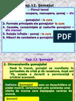 Somajul