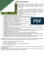 Bactéria (Clamydiaceae)