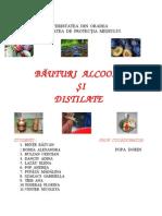 Bauturi Alcoolice Si Distilate