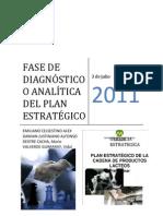 Fase Del Diagnostico o Analitica