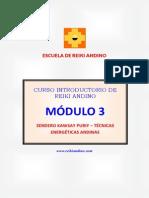 Curso Reiki Andino Modulo 3 - 2014
